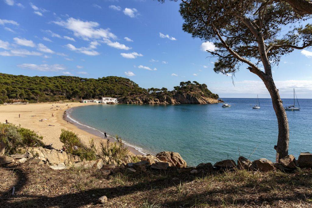 Пляж Platja del Castell, Паламос