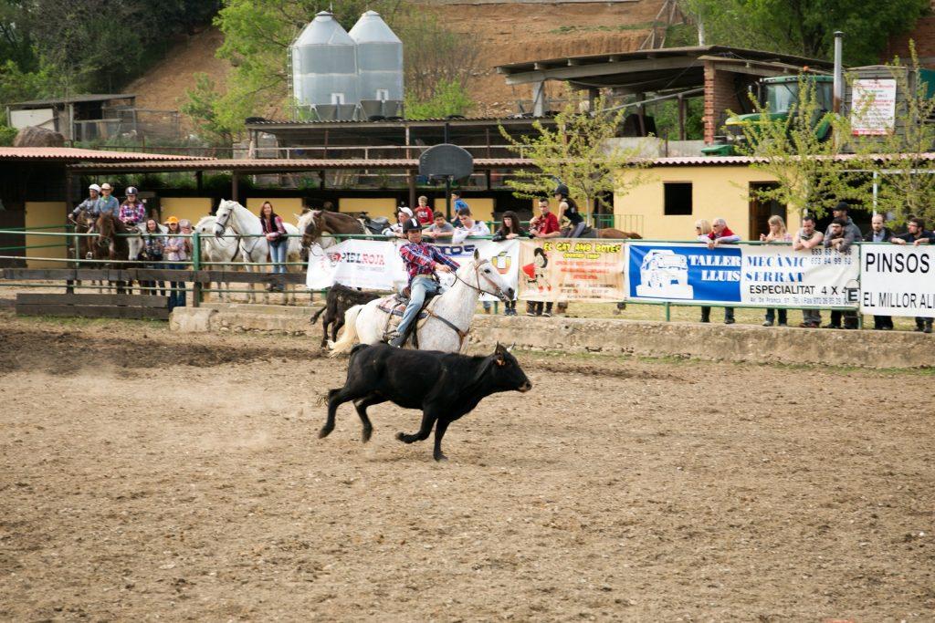 Festival of the Texas cowboys in Besalu 2015