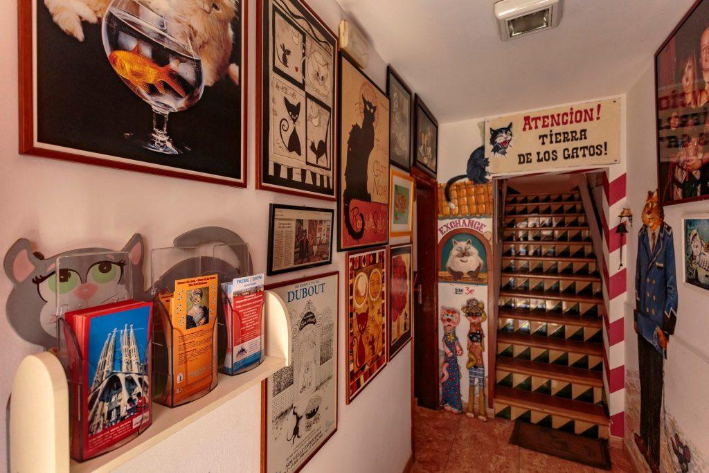 Cat's House in Lloret de Mar