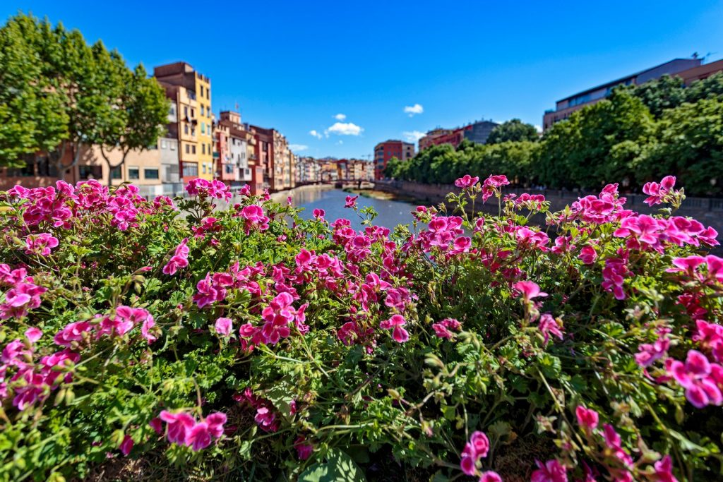 Праздник цветов в Жироне 2019