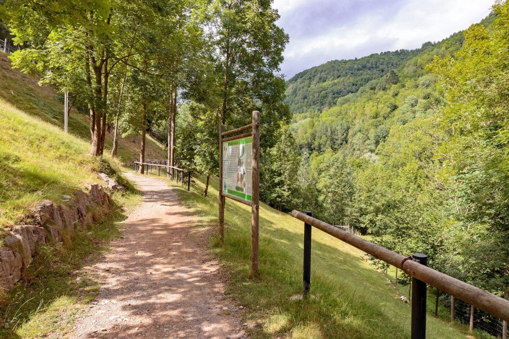 Promenade dans le parc avec des animaux dans les Pyrénées - Molló Parc.