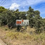 Parcela de terreno en la urbanización Mas Palli, Calonge, Costa Brava.